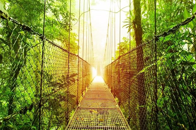 Costa Rica - Pura Vida!  Servicios terrestres 10 noches Open Voucher -
