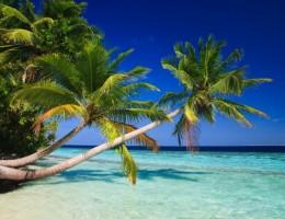 Disfrutá del Caribe con esta Promo! - Punta Cana - 09 Noches All Inclusive - 16 al 25 Abril