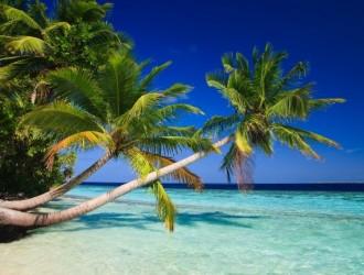 Vacaciones de Invierno *Punta Cana 09 noches* - All Inclusive - Salida 21 de Julio