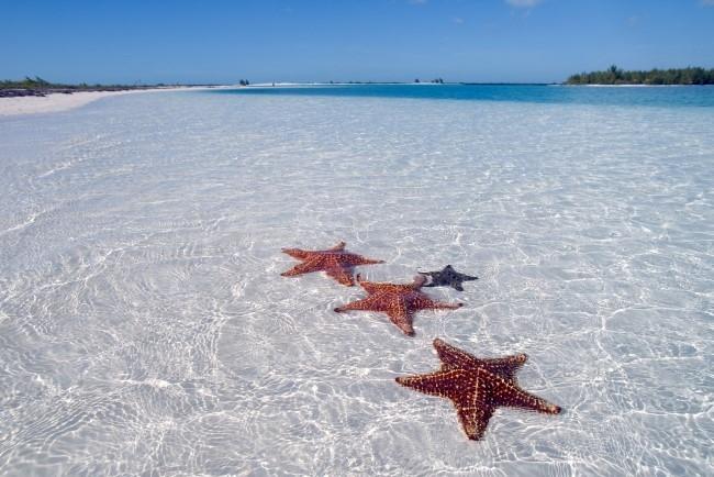CUBA - Hoteles Meliá - Dos Cayos y Varadero - Solo Playas Todo Incluído!  Febrero 2019 - 13 noches!